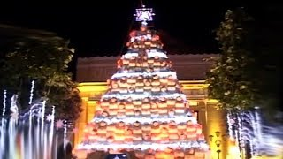 CHRISTMAS TREE ILOCOS SUR