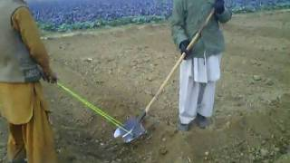 Charsadda  Pakistan farmers setting fields