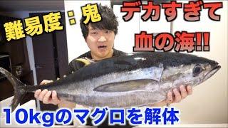 血の海!!10kgのマグロの解体の難易度が鬼すぎる件www