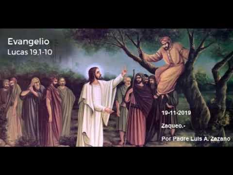 Evangelio del Día Martes 19 de Noviembre - Lectura y Salmo de hoy