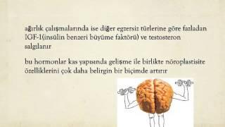 Beyninize Bir Iyilik Yapın!
