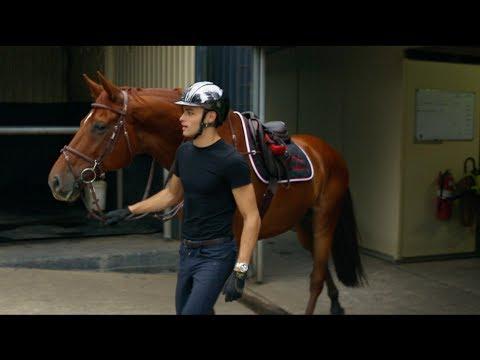 DRESSAGE HORSE TRIES SHOWJUMPING || MATT HARNACKE - PART 1