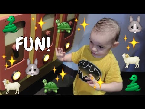 Hey Nash Toddler area at Discovery Children&39;s Museum fun with animals for kids