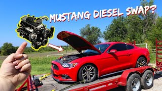 Cummins-Swapped Mustang?? We Bought another Mustang!