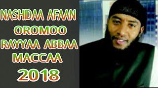 Rayya Abba Macca 2018