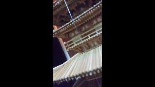 薬師寺東塔 (凍れる音楽と表現したアーネスト・フェノロサ)