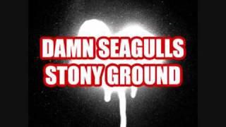 Damn Seagulls - Stony ground