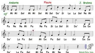 Video brahms lullaby recorder notes tutorial for Cancion de cuna de brahms