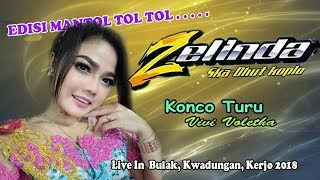 Konco Turu Cover Album Vivi Voletha - Om Zelinda  live In Bulak Kwadungan 2018