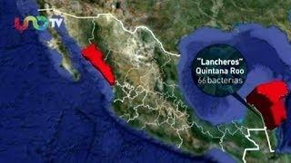 Las playas más limpias y sucias de la República Mexicana