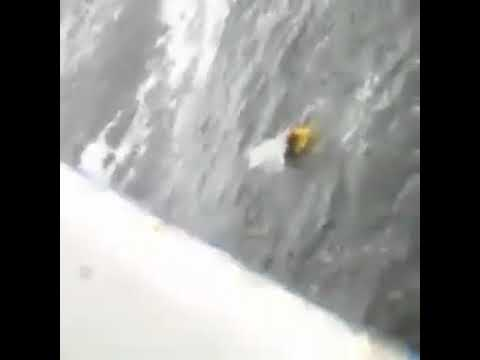 Accidents at Sea - Pilot falls in Water During Embarkation
