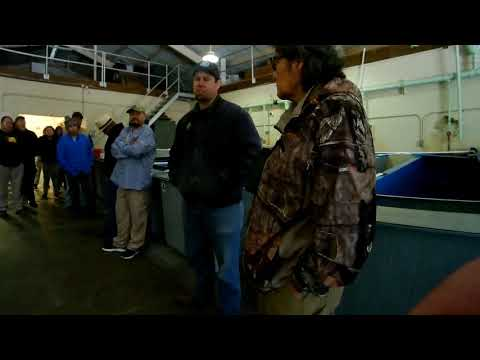 Tonto Creek Fish Hatchery Tour