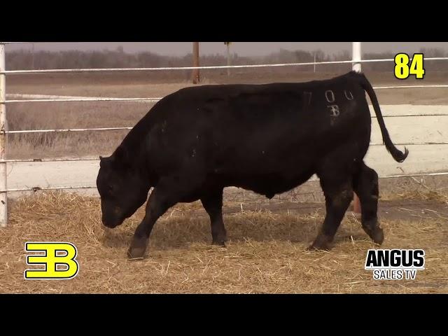 Benoit Angus Lot 84
