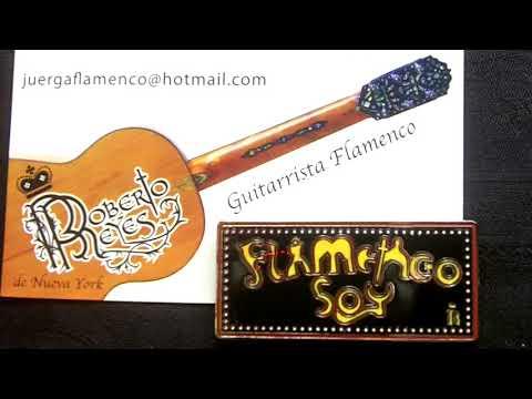 Toronto Flamenco con la guitarra de Roberto Reyes