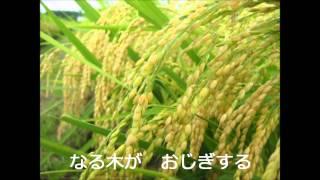 山形県民謡 - 花笠音頭