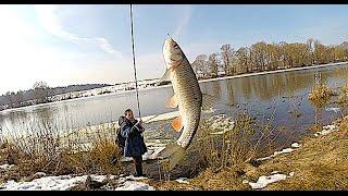 Рыбалка на мормышку с боковым кивком весной по открытой воде.Самая уловистая снасть в межсезонье.
