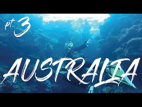 MYSTERY FLIGHTS AUSTRALIA PART 3 | GREAT BARRIER REEF SCUBA DIVING | ZOO | SURFING