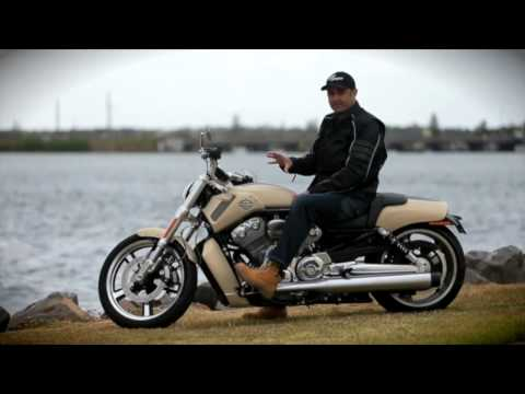 Harley Davidson V Rod Muscle Review