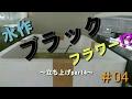 【淡水水槽#04】水作 ブラックフラワー⁉~60センチスリム水槽立ち上げpart4~