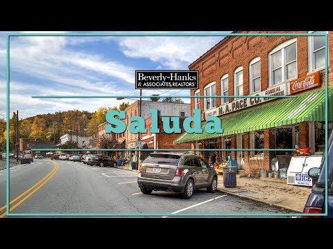 Community Information: Saluda, NC