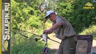 Трудовая рыбалка на Москва-реке (рыбалка без прикрас) [salapinru].