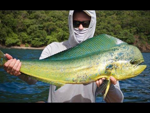 El Dorado: Offshore Kayak Fishing Costa Rica
