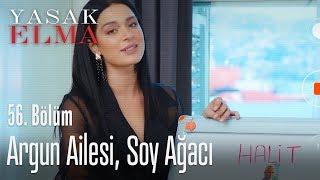 Zehra YouTuber olma yolunda - Yasak Elma 56. Bölüm