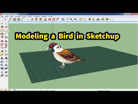 how to modeling a bird in sketchup software tutorial for beginners in hindi/urdu thumbnail