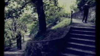 Biorobot - Csipogó (hivatalos klip)