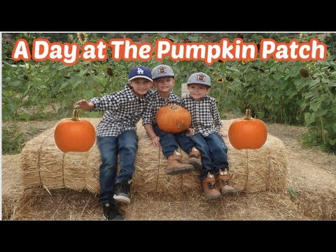 A Day At The Pumpkin Patch | Cozy Fall Days At Home 2019