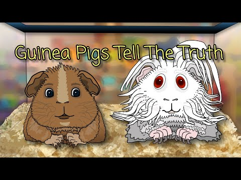 Guinea Pigs Tell The Truth