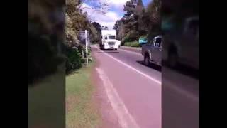 Flogão Gramado RS