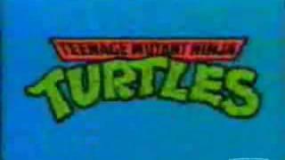 teenage mutant ninja turtles heavy metal cover