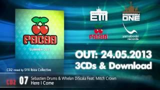 Pacha Summer 2013  Mini-Mix