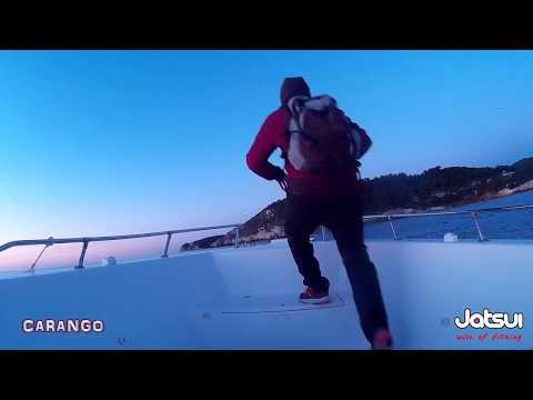 Spigole in Offshore - Team Jatsui