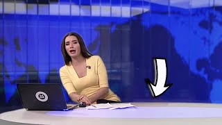بالفيديو.. كلب يقتحم نشرة أخبار روسية ويفاجئ المذيعة على الهواء