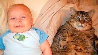 Видео Funny Kids, Анекдоты про Шутки и Анекдоты Watch | смотреть спортивное видео смешное