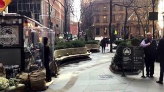 Hanover Square, lower Manhattan, New York (1-26-17)
