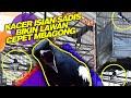 Jangan Kapok Kacer Gacor Isian Sadis Bikin Lawan Cepat Mbagong Rame Rame  Mp3 - Mp4 Download