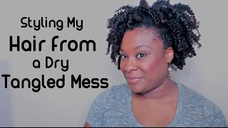 Styling My Hair from a Dry Tangled Mess