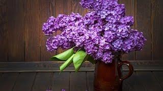 видео Где заказать цветы
