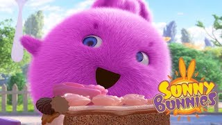 Cartoons for Children | CAKE CATASTROPHE | SUNNY BUNNIES | Funny Cartoons For Children