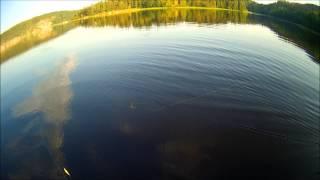 Подсак(Рыбалка в Карелии на севере Ладожского озера. Июль 2014 г., 2014-07-28T21:26:12.000Z)