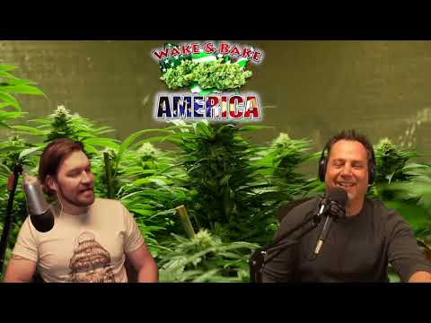 Wake & Bake America 559 Big Business Getting Into Cannabis & Pennsylvania DUI Laws