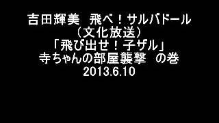 吉田照美 飛べ!サルバドール 松中権 検索動画 28