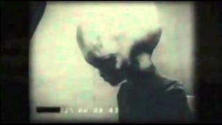 Download Video Grey Alien Filmed By KGB MP3 3GP MP4