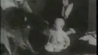 John Watson - Little Albert