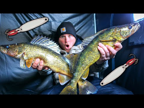 RARE Catch Through The Ice | Southern Michigan Walleye Fishing