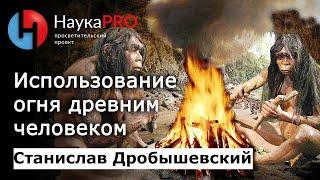 Станислав Дробышевский - Использование огня древним человеком