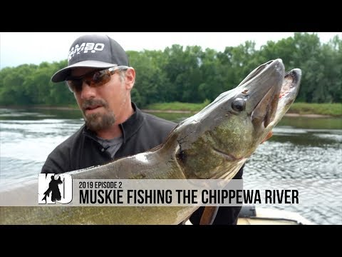 Fishing The Chippewa River For MOMMA MUSKIE - Episode 2